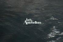 Смотреть клип Lady Antebellum - Ocean в Тас Икс (Tas Ix)